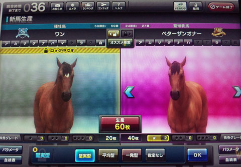 betahaigou20120101.jpg