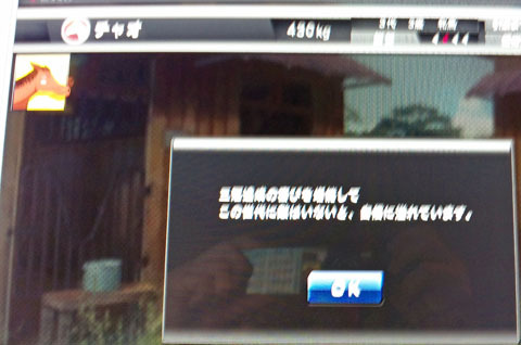 ciaosankankome20120101_edited-1.jpg