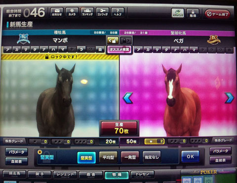 pegahaigou20120101.jpg