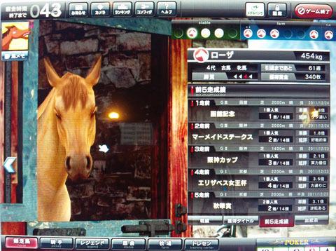 rozaseiseki20110131.jpg