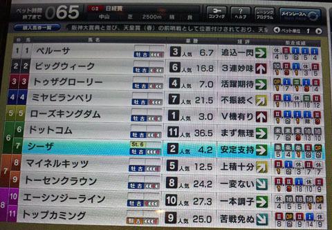 sizanikei20120208.jpg
