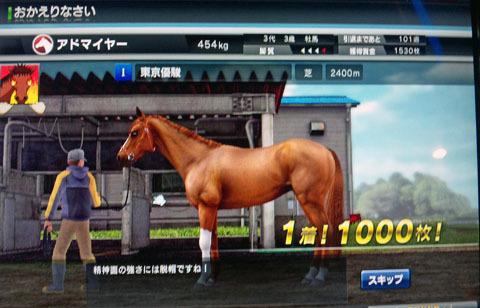adomaiyadabikikyou20120111.jpg
