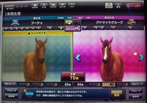 adomaiyahaigou20120108.jpg