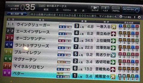 betatanigawatake20120102.jpg
