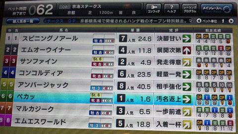 pegakyouraku20120101.jpg
